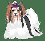 biewer-terrier-icon